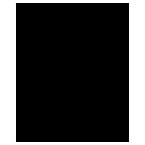 carnivaland